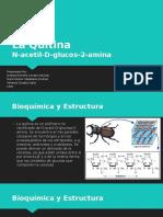 La Quitina Bioquimica