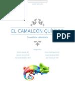Reporte Camaleon Quimico