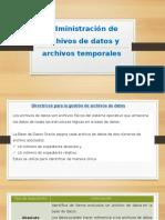 Guia de administracion Oracle Cap. 15.pptx
