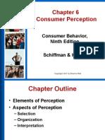 Chapter 6 Consumer Perception