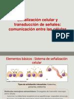 Señalización Celular GPCR