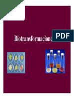 Tema 10 Biotransformaciones1