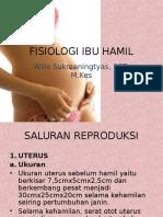 Fisiologi Ibu Hamil