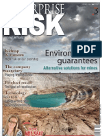 Enterprise Risk - May 2010