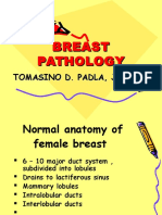 Breast Pathology, Padla