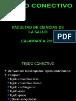 TEJIDO CONECTIVO 2013
