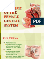 01 Anatomy of Female Genital System