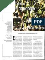 Cultivo Aguacate en Granada.pdf