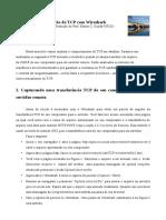 Wireshark_TCP.pdf