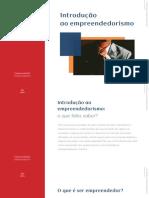 Introdução ao Empreendedorismo.pdf