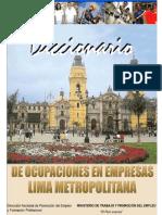 Diccionario Ocupaciones Empresas Lima
