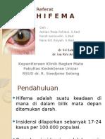 Referat Hifema 2016-1