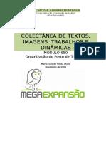 Textos_Gestão Posto Trabalho.doc