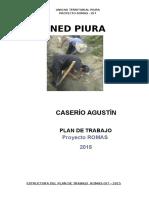 Plan de Trabajo San Agustin