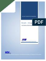 A4_info_Krabbe-SLight_dt.pdf