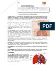 Guia Repaso Sistema Respiratorio