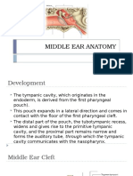 Middle Ear Anatomy