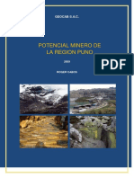GEOLOGIA PUNO2009.pdf