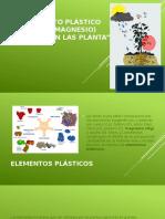 Magnesio (Presentation)