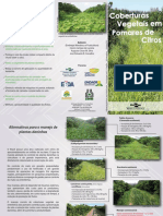 Folder Projeto Abccitros Coberturas Vegetais Cpatc