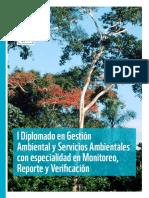 Diplomado Gestion Ambiental Medium