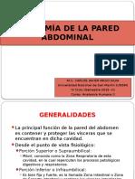 Anatomía de La Pared Abdominal - Exposición 1