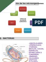 Tema 2 Microbiologia.