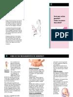folder - sinais de gestação.pdf