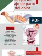Fisiología Del Trabajo de Parto y Del Dolor.final