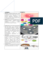 Terminos esenciales de microbiologia con ejemplos