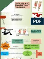 Adaptaciones Musculoesqueletico y Hematologico