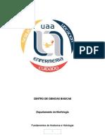 Centro de Ciencias Basicas Final Embrio - Copia