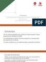 Somatotipo Energy 2015