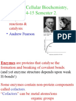 Enzymes 1