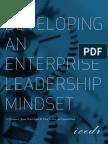 Developing an Enterprise Leadership Mindset