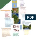 Amazonia-infografía