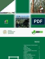 Brochure Doctorado Proyectos Investigacion Medio Ambiente FV