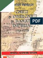Costin Fenesan - Cnezi Si Obercnezi
