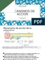 MECANISMOS DE ACCIÓN.pptx
