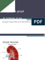 Neoplasma pada ginjal-Armando.ppt