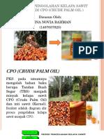 AFINA NOVIA RAHMAN D3-B.pptx