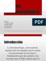 Informe Fenomenológico