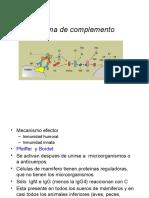 7Sistema-Complemento.pdf