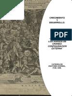 GUÍA Nº 3.ANATOMÍA DE CRÁNEO.pdf