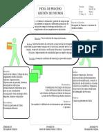 Ficha de Proceso Insumos