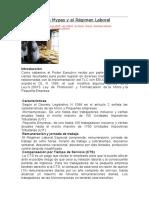 Nueva Ley de Mypes y El Régimen Laboral