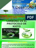 Bonos de Carbono en El Protokolo de Kioto
