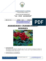 VOZ AGRARIA_No_ 01_2014_ARANDANO.docx