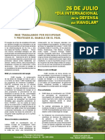 BOLETIN diaInternacional mangle.pdf