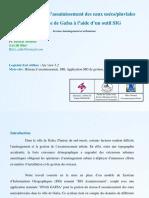 sig.2012_salhi_bilel.pdf